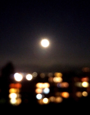 midnight citylights bookeh