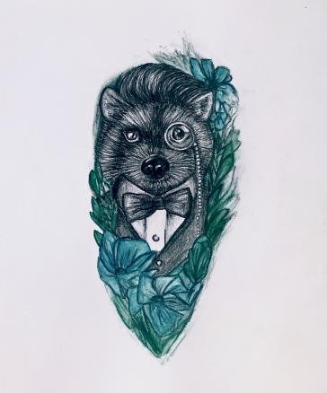 crazy handsome raccoon